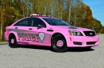 """2015 Chevrolet Caprice - Breast Cancer Awareness Decals """"Hope"""""""