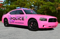 """2010 Dodge Charger - Breast Cancer Awareness Decals """"Pinkie"""""""
