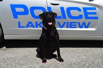 """K-9 Officer """"Lucy"""""""